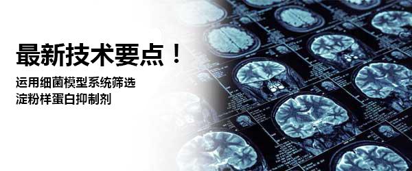1-汉化.jpg